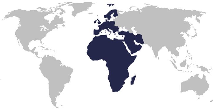 ramiro's target regions